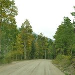 The washboard road (and aspens beginning to change) - September