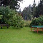 Il tavolo da ping pong in giardino