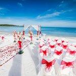 Sareeraya set up for our amazing wedding!