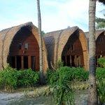 Oasis Cottages