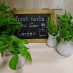 Fresh herbs in the kitchen