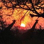 Promenade au coucher du soleil autour du lodge