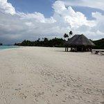une partie de plage