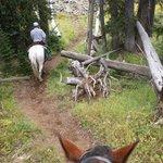 Rob leading us on a trailride.