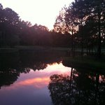 Sunset by the pond.