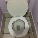Really?  You can't replace a toilet seat???