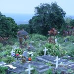 The cemetery and view of the Kona coast in the background