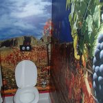 its an adventure just going to the loo!
