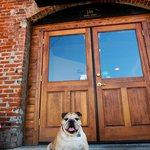Roccos Back Entrance