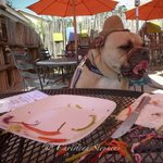 Now THAT is what I call a doggone deeeelicious meal!