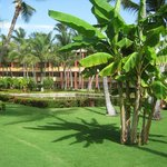 Zonas comunes del hotel - impecables