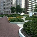 Gardens and walking trail