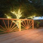 back deck and lit pecan tree.