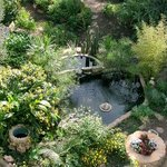 Hotel Molino gardens with water features