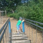 my son on the rickety rackety bridge
