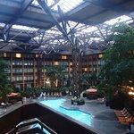 Hotel room around pool