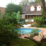piscina rodeada de maravillosa vegetación