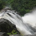 Athirappilly falls... very nearby the resort
