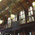 beer fermenters
