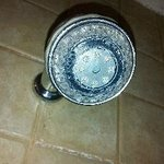 Shower head stopped up
