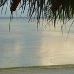 Calm lagoon from Villa 10