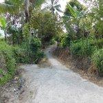 El camino que sube nos lleva a un paseo increible entre los campos de arroz.
