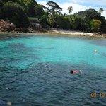 Snorkeling activies