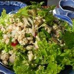 chicken and Thai herbs salad