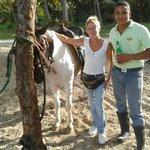 le cheval à Ernesto
