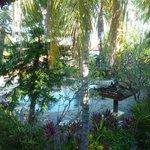 Blick vom Zimmer auf den Poolbereich