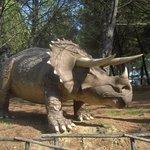 Triceratopo