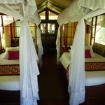 canopy beds with mosquito nets