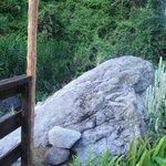 meditation rock by cottage