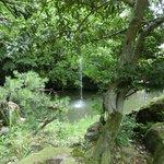 神苑(県指定名勝)旧金谷御殿の庭園であって、古代舞楽の楽器を模した地泉廻遊式の名園です。