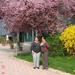 апрель, все вокруг отеля цветет