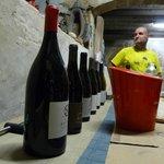 Wijnbezoek