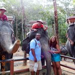 Our Elephant We Rode