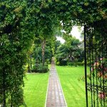 jardines de la Buena Vibra