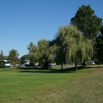 Shade is a scarce commodity at this RV park. Plenty of lawn though.
