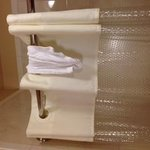 Dirty Washcloth left on shower
