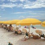 Beach Umbrella Service