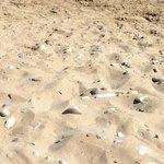 Golden sand!!