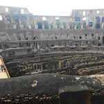 4000 Gladiators and animals that lived under the floor in the Colosseum.