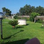 sehr schöner und Gepflegter Garten