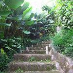 Steps to Villa
