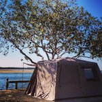 Glamping on the Noosa River