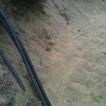 viottolo che porta alla spiaggia.... come si vede accessibile ai disabili