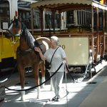 Original Horse drawn Tram