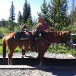 Guide preparing horse