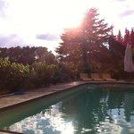 Puesta de Sol entre viñedos en la Piscina